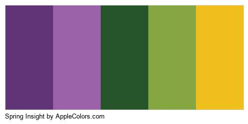 Spring Insight Color Colors Logo
