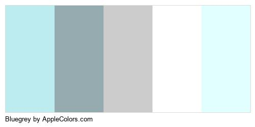 Bluegrey Brand Colors Logo