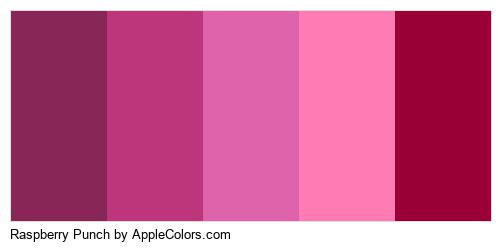 Raspberry Punch Color Colors Logo